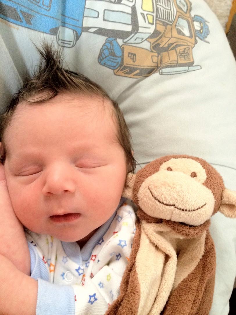 theo with monkey-1